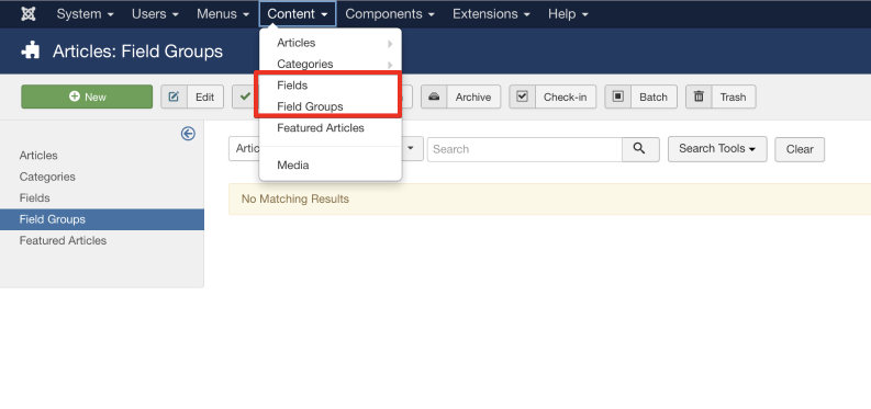 How to see Custom Fields via Article Content