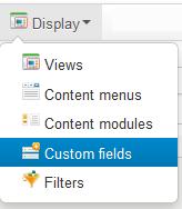 Add enry custom fields