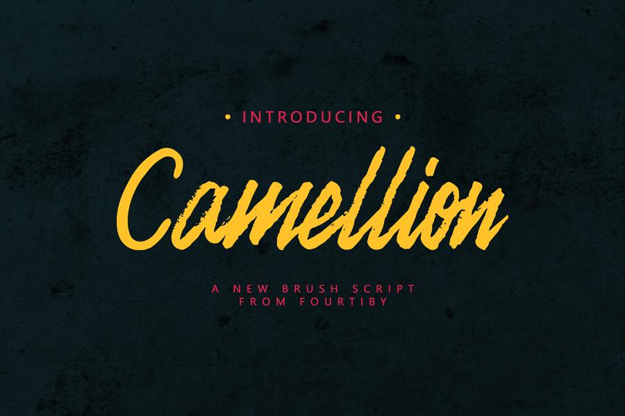 Camellion Brush Script Font