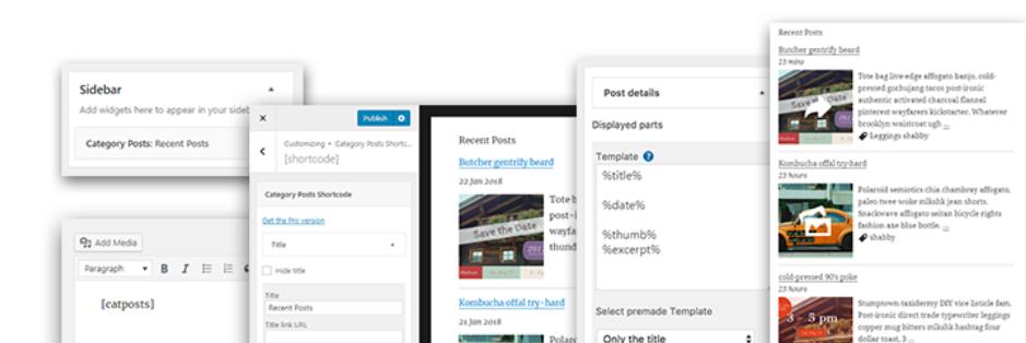 Category Posts Widget WordPress Category Plugin